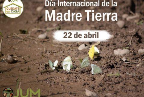 Da_Internacional_Tierra