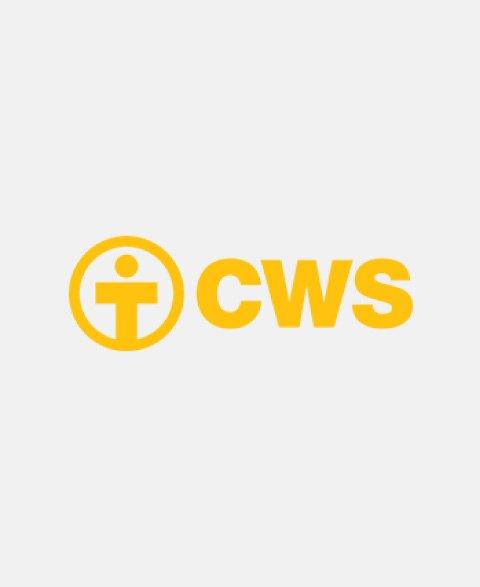 auspiciantes-cws